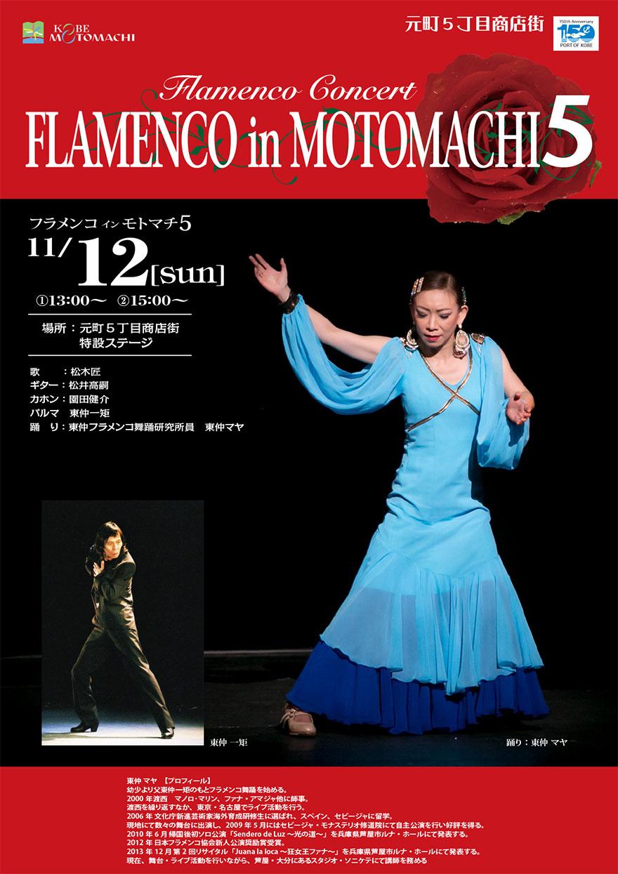 flamenco2017.jpg