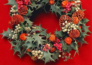 5丁目 本物の「もみの木」を使ったクリスマスデコレーション2017 Xmasまで毎日開催