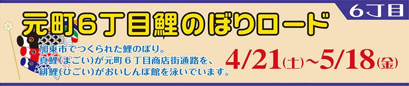 6cho2018_koinobori.jpg