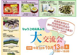10/13(土) ひょうごの元気ムラ大交流会 開催!